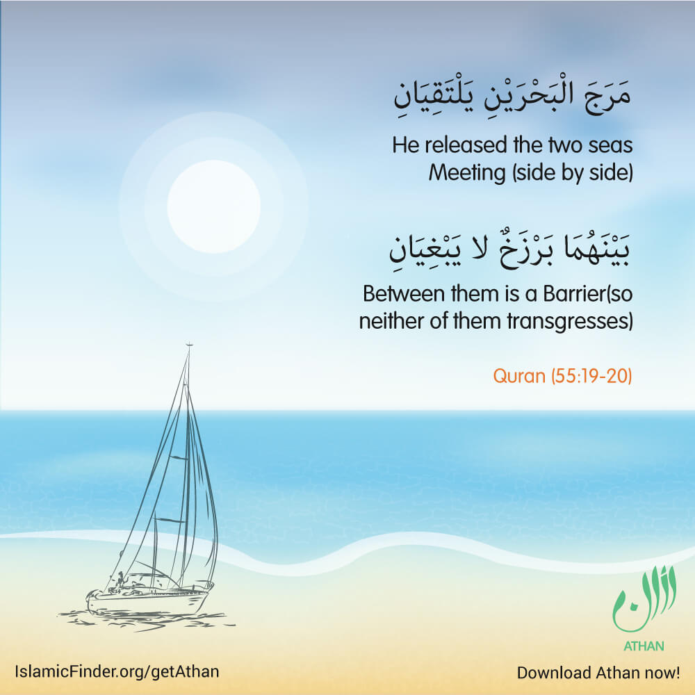 Allah the almighty