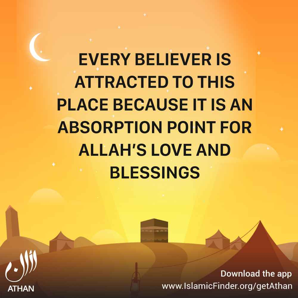 Believers delight in Allah's blessings