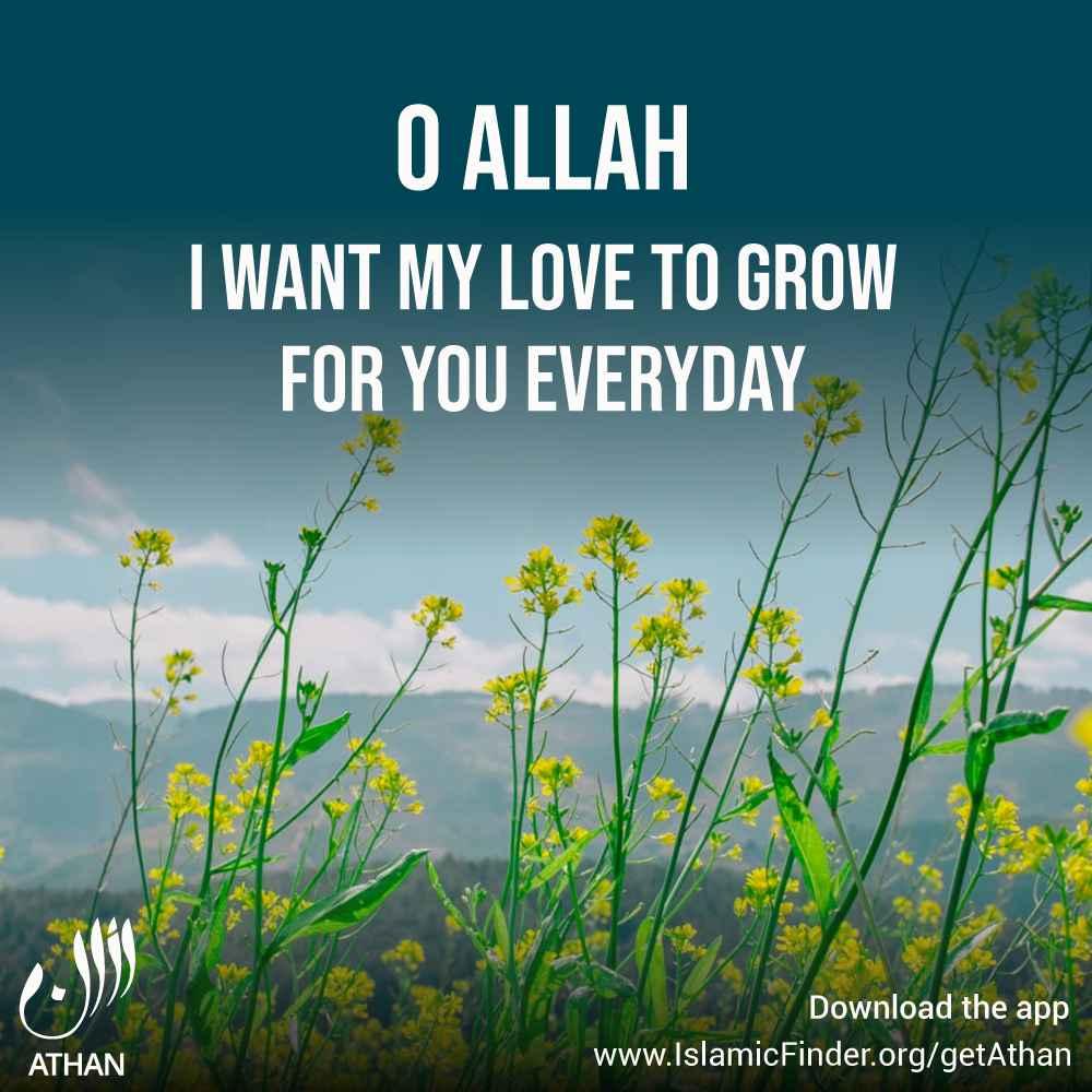 Allah, Love, Hope & Faith