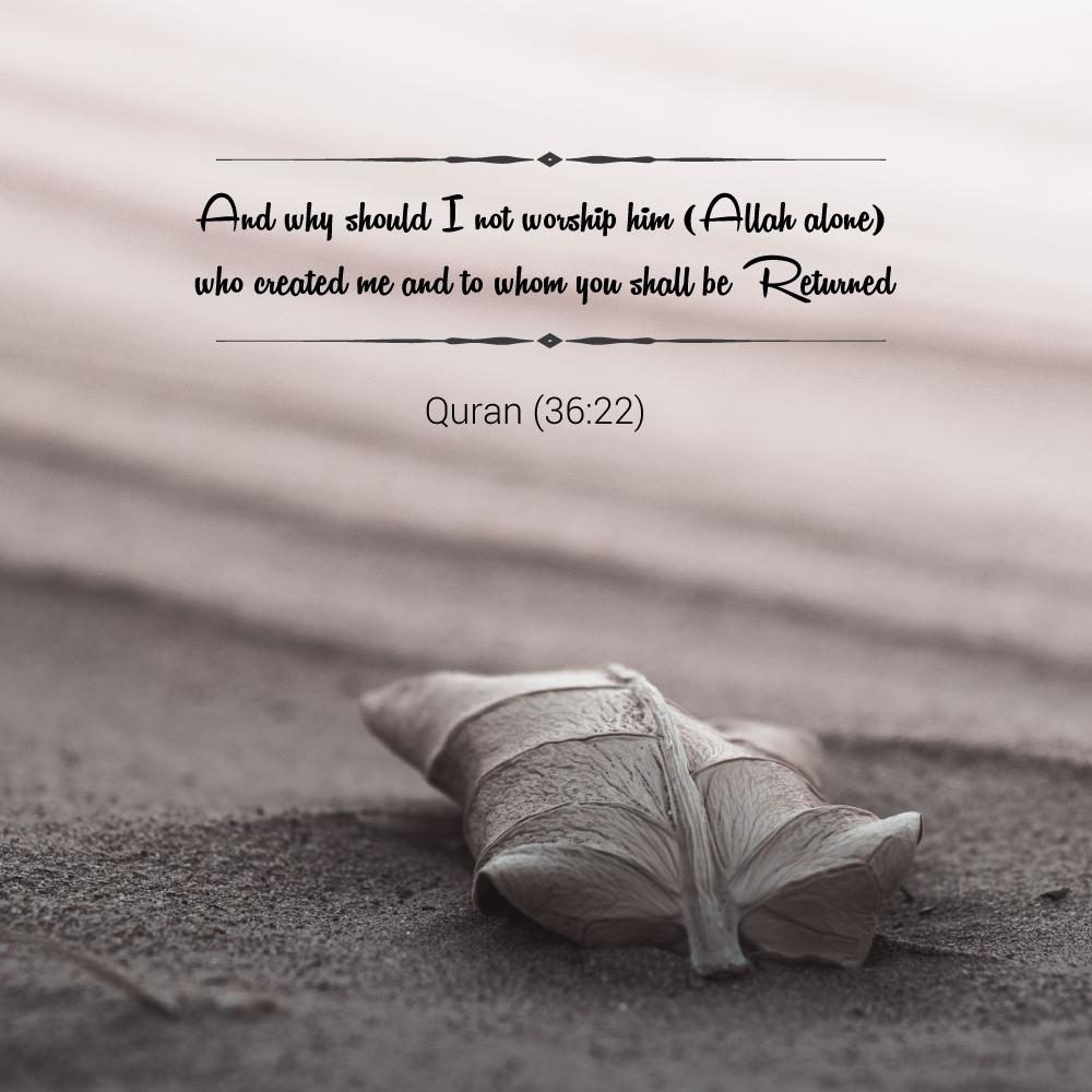 Allah alone is the creator