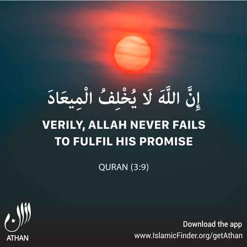 Promises of Allah Almighty to the Believers